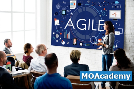 14 feb | MOA - Agile, Scrum, Lean